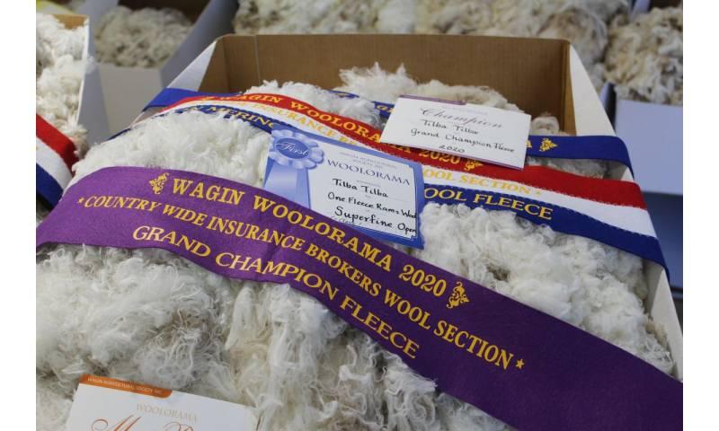 wool-prizes